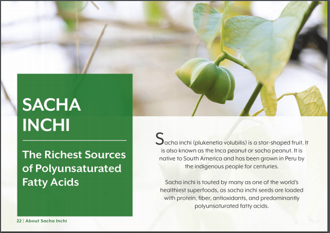24 Sacha Inchi Omega 3 Fatty Acids