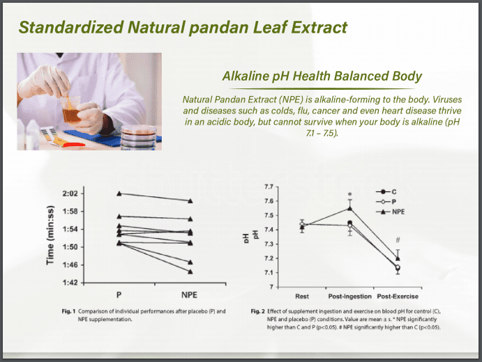 29 Pandan Leaf Extraction Process