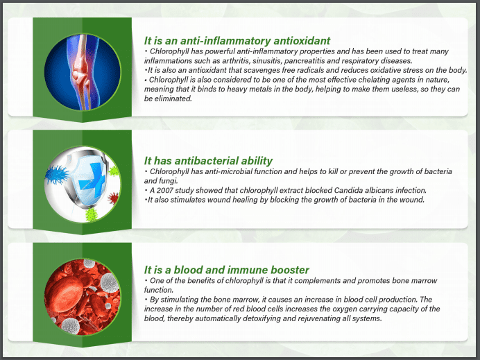 37 Benefits of Chlorophyll in Cellpro