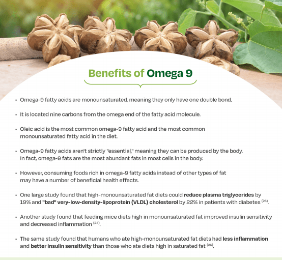 benefits of omega 9